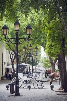 Horse carriage for tourists, Zona Colonial (Colonial District), UNESCO World Heritage Site