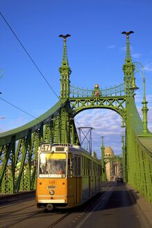 Liberty Bridge and tram, Budapest, Hungary, Europe