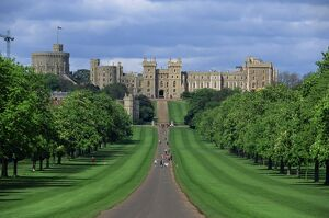 Long Walk from Windsor Castle, Berkshire, England, United Kingdom, Europe