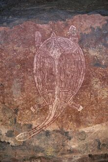 Painting of turtle at the aboriginal rock art site at Obirr Rock in Kakadu National