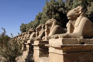 Ram headed sphinxes, Temple of Karnak, near Luxor, Thebes, UNESCO World Heritage Site