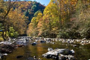 River and colourful foliage in the Indian summer, Great Smoky Mountains National Park