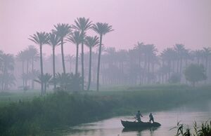River Nile near Memphis, Egypt, North Africa