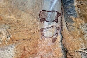 Rock paintings approx. 4000 years old, Tsodilo Hills, UNESCO World Heritage Site