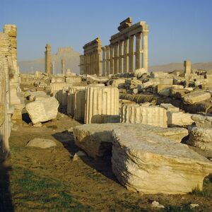 The Ruins at Palmyra