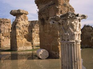 Ruins of the Roman Baths at Carthage