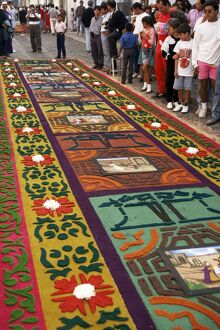 Sawdust rug or carpet on the street