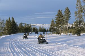 Snowmobiling in the western area of Yellowstone National Park
