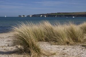 Studland Beach and The Foreland or Hardfast Point, showing Old Harry Rock