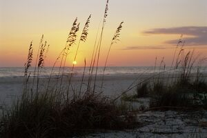 Sunset, Gulf Coast