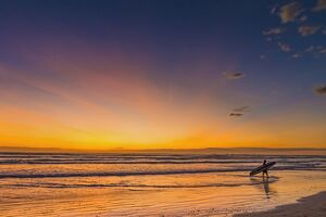sunset surfer playa guiones beach nosara nicoya