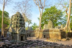 Ta Prohm temple ruins, Angkor, UNESCO World Heritage Site, Siem Reap Province, Cambodia