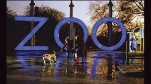 Peter Greenaway's A Zed & Two Noughts (1985)