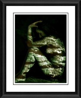 Natural Framed Photographic Print