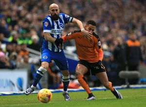 Sky Bet Championship - Brighton and Hove Albion v Wolves - AMEX Stadium