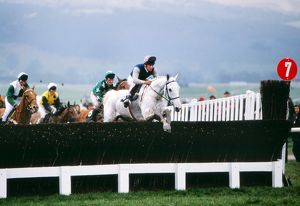 Desert Orchid on the way to winning the 1989 Cheltenham Gold Cup