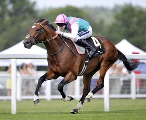 Frankel - 2011 St James' Palace Stakes