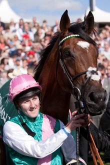 Frankel at the 2012 Ebor Festival