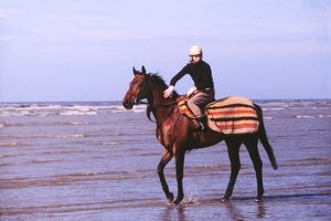 Red Rum in the sea off Southport beach