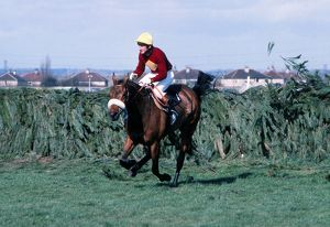 Red Rum and Tommy Stack clear the last to win the 1977 Grand National