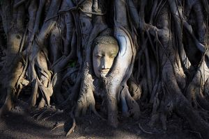 <b>Ayutthaya, Thailand</b><br>Selection of 120 items