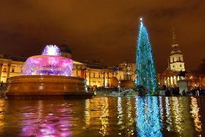 Lighting of the Trafalgar Square Christmas Tree in London