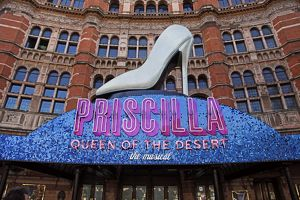 Priscilla, Queen of the Desert musical