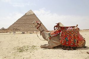 The Pyramids of Giza in Cairo, Egypt