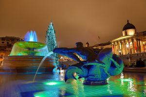 Trafalgar Square Christmas Tree decorations and fountains, London