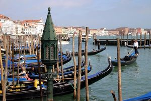 <b>Venice</b><br>Selection of 161 items