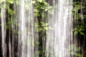 Waterfall with rushing water, spray and leaves