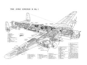 Avro 694 Lincoln Cutaway Poster