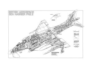 BAe Sea Harrier FRS2 Cutaway Poster