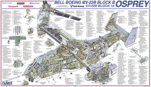 <b>Bell Cutaway</b><br>Selection of 15 items