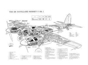De Havilland DH Hornet Cutaway Drawing