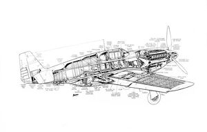 North American P-51A Mustang Cutaway Drawing