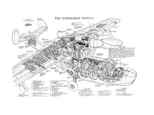 Supermarine Seagull Cutaway Drawing