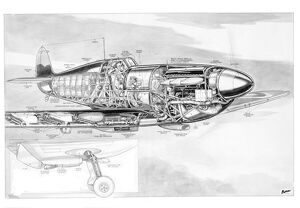 Supermarine Spitfire Cutaway Drawing