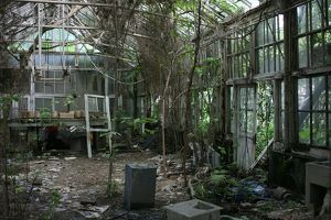 Abandoned greenhouse, National Taiwan University, Taipei, Taiwan