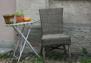 Basket chair and plants