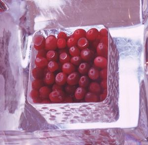 Redcurrants in ice