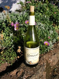 Somerset, English wine