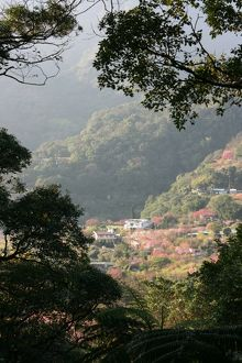 Yangmingshan National Park, Taipei County, Taiwan