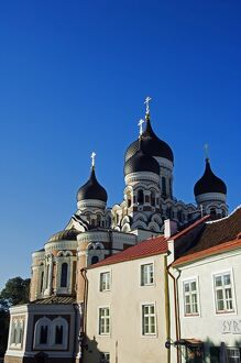 19th Century Russian Orthodox Alexander Nevsky Cathedral