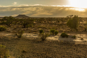 new/20191004 awl 7/africa namibia keetmanshop sunrise dry riverbed