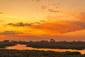 new/20191004 awl 10/africa zambia sunset kafue national park