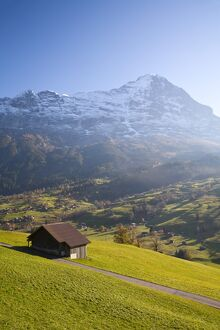 Alpine Meadow, Eiger & Grindelwald, Berner Oberland, Switzerland