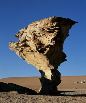 Arbol de Piedra or Stone Tree is a massive wind-eroded boulder