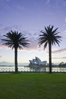 Australia, New South Wales, Sydney, Sydney Opera House through palms