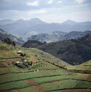 The beautiful hill-country of Southwest Uganda and